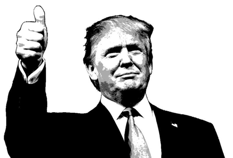 Wszystkie kobiety Donalda Trumpa